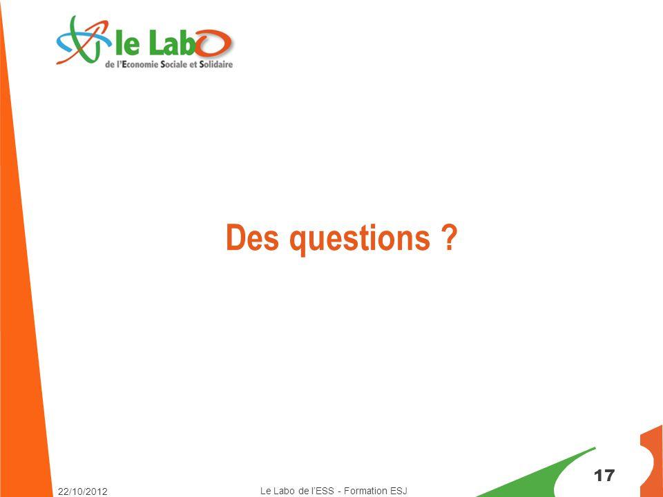 17 Des questions ? Le Labo de l'ESS - Formation ESJ 22/10/2012