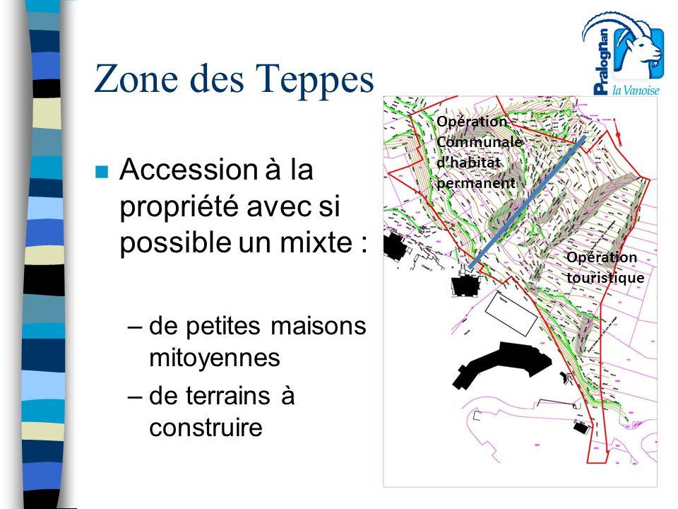 Zone des Teppes n Accession à la propriété avec si possible un mixte : –de petites maisons mitoyennes –de terrains à construire Opération touristique