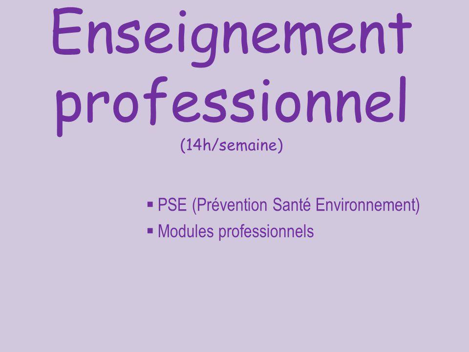 Enseignement professionnel (14h/semaine)  PSE (Prévention Santé Environnement)  Modules professionnels