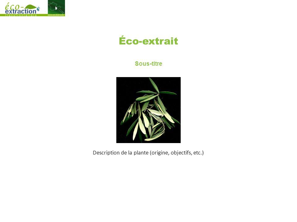 Éco-extrait Sous-titre Description de la plante (origine, objectifs, etc.)