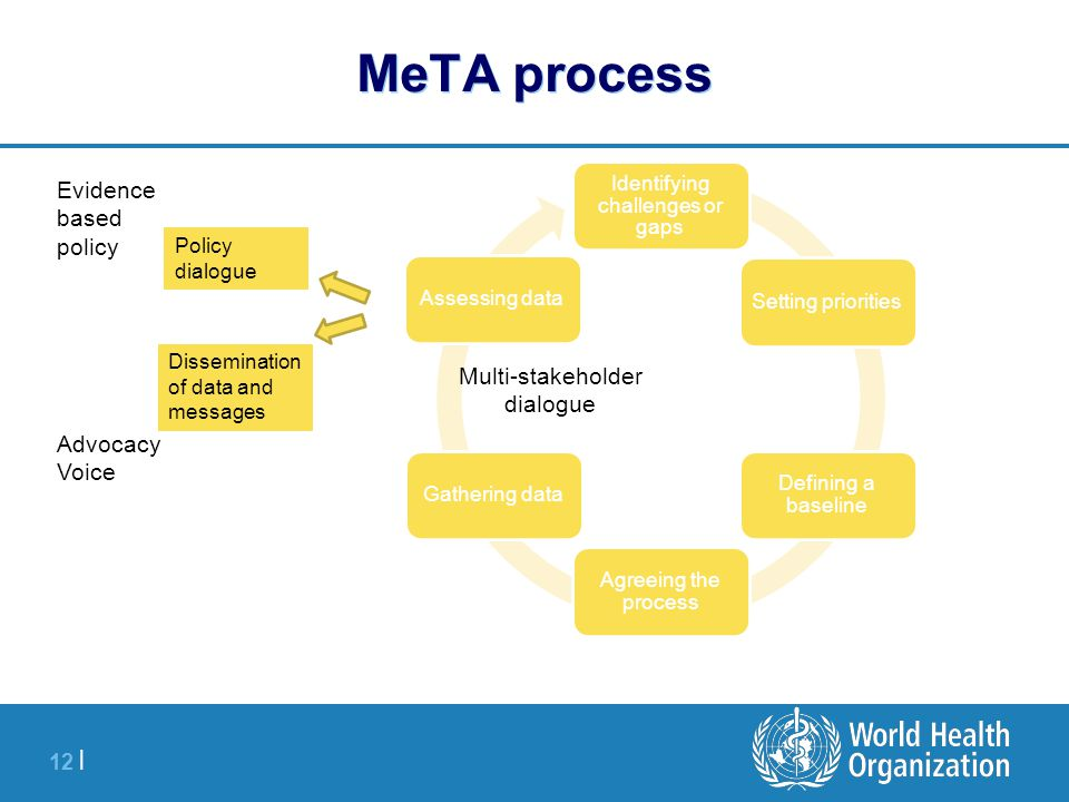 12 | MeTA process Identifying challenges or gaps Setting priorities Defining a baseline Agreeing the process Gathering dataAssessing data Policy dialo