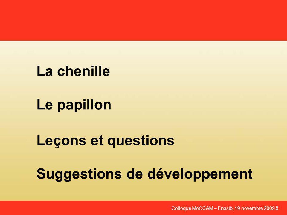 Colloque MoCCAM – Enssib, 19 novembre 2009 2 La chenille Le papillon Leçons et questions Suggestions de développement