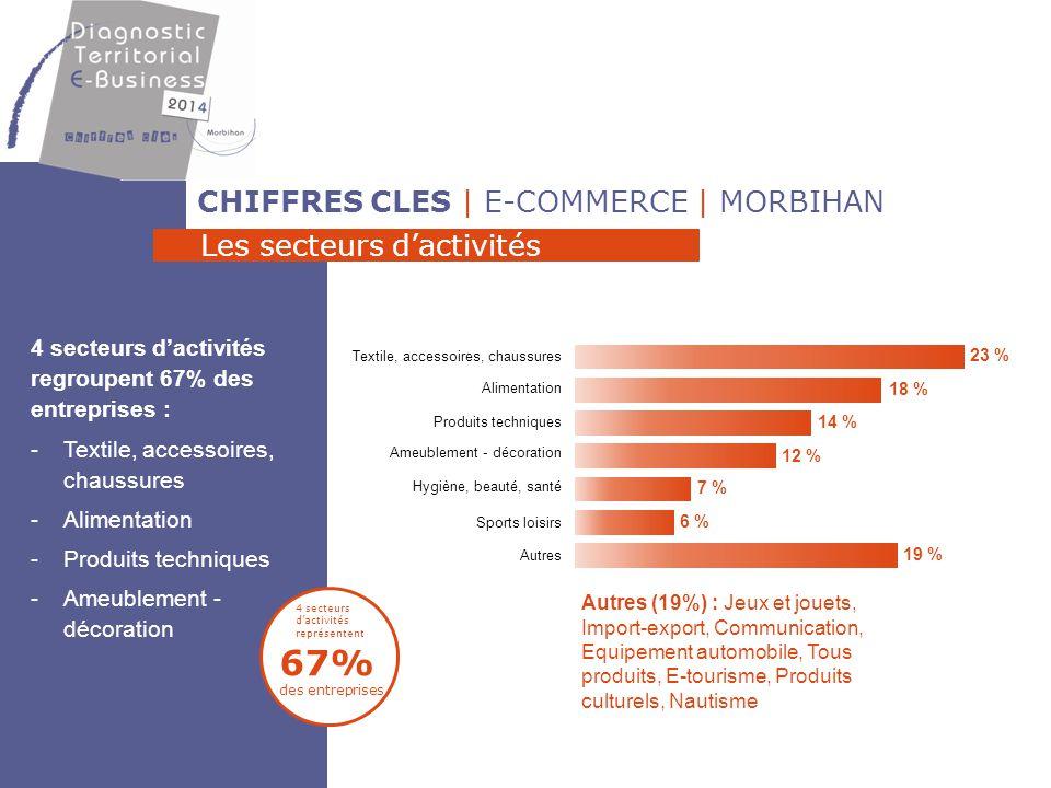 CHIFFRES CLES | E-COMMERCE | MORBIHAN La taille des e-commerçants 87% des entreprises ont moins de 5 salariés 53% des entreprises ont un seul salarié Entre 2012 et 2013, les effectifs des e-commerçants sont plutôt stables 87% < 5 salariés [101 ; 200] 6 26 1 [51 ; 100] [21 ; 30] [31 ; 50] [6 ; 10] [11 ; 20] [2 ; 5] 1 0 1 1 1 5 53 8 entre 1 et 3 non salariés Nombre de salariés