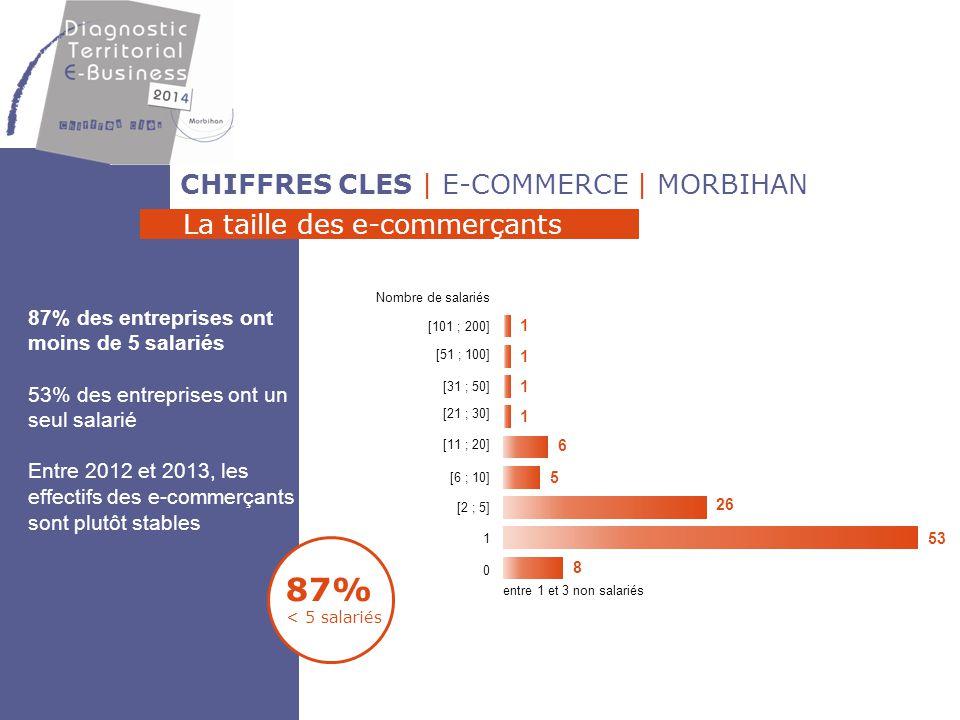 CHIFFRES CLES | E-COMMERCE | MORBIHAN Le chiffre d'affaires 56% CA <50 000 € 16% CA >500 000 € > 500 000 € 11,3 % 6,5 % 9,7 % 56,5 % 16,1 % ]250 000 ; 500 000 €] ]100 000 ; 250 000 €] ]50 000 ; 100 000 €] [0 ; 50 000 €] Moins de 50 % Entre 51 % et 80 % + de 80 % 2,7 % 62,2 % 35,1 % Les secteurs textile- accessoires- chaussures (11,8%) et alimentation (8,8%) principalement 35% font + de 80% du CA sur Internet Part du CA réalisé sur Internet