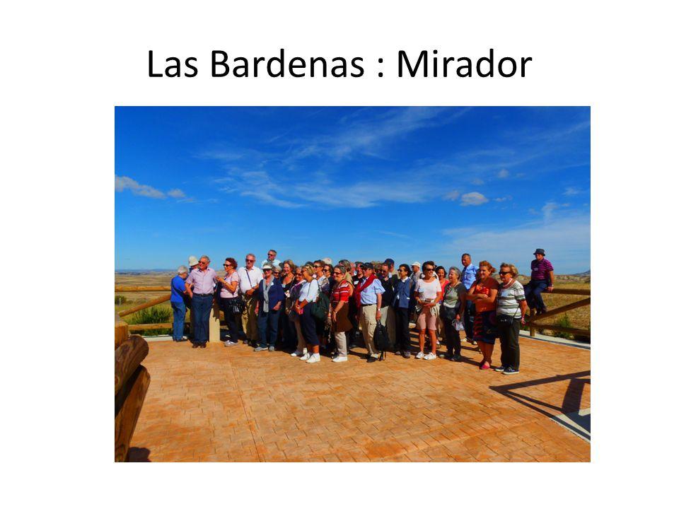 Las Bardenas : Mirador