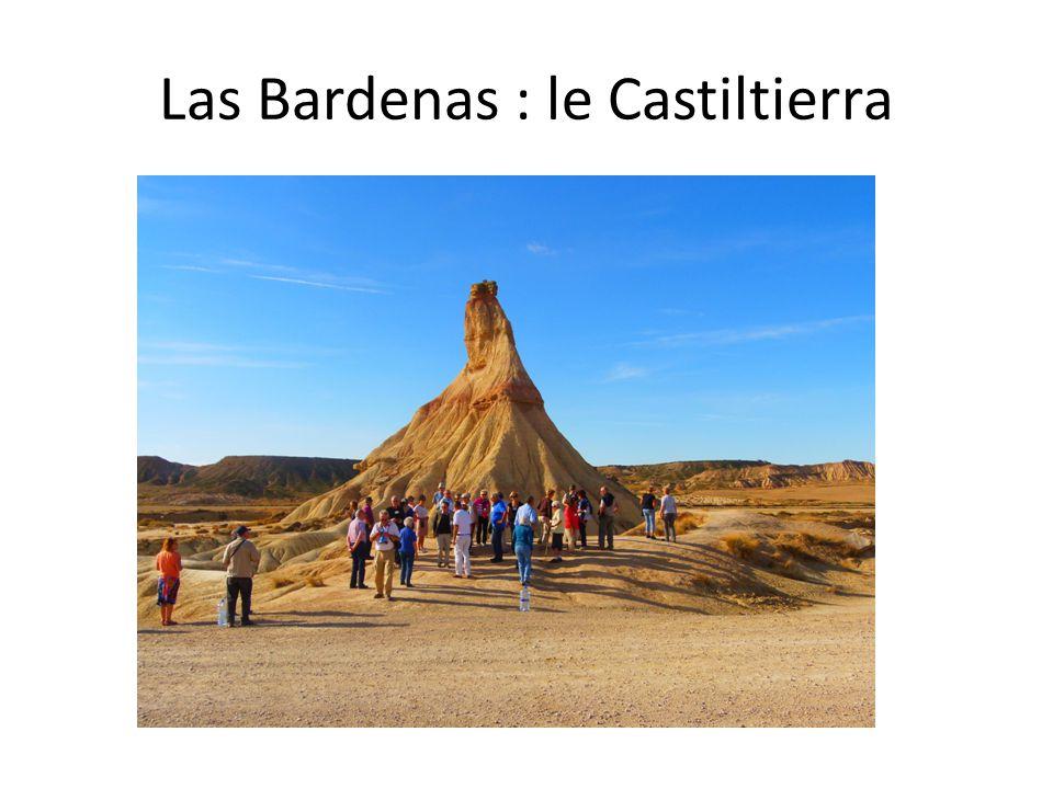 Las Bardenas : le Castiltierra