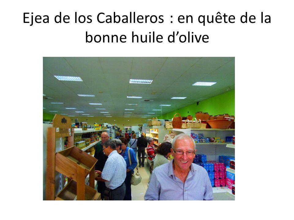 Ejea de los Caballeros : en quête de la bonne huile d'olive