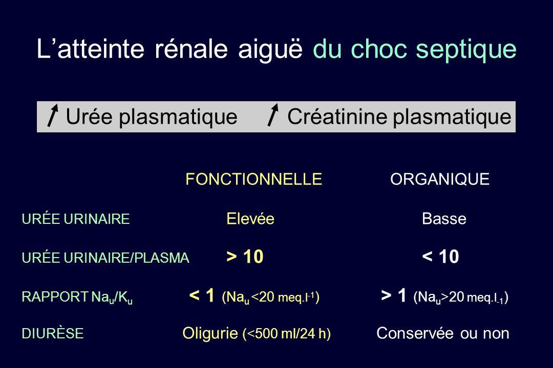 FONCTIONNELLEORGANIQUE URÉE URINAIRE Elevée Basse URÉE URINAIRE/PLASMA > 10 < 10 RAPPORT Na u /K u 1 (Na u >20 meq.l -1 ) DIURÈSE Oligurie (<500 ml/24
