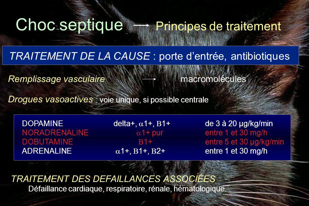 Choc septique Principes de traitement DOPAMINEdelta+,  1+,  1+de 3 à 20 µg/kg/min NORADRENALINE  1+ purentre 1 et 30 mg/h DOBUTAMINE  1+entre 5 et