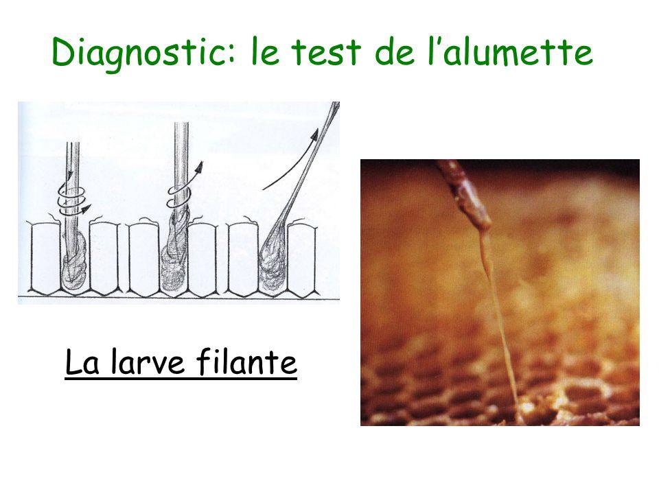 « Enrayer » la maladies Le double transvasement –Fabrication d'un essaim nu –Faire bâtir des cires –Retransvaser définitivement dans une ruche La destruction du matériel