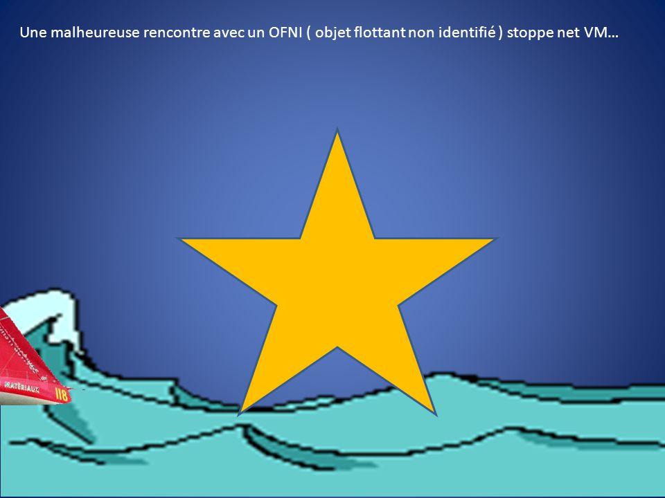 Une malheureuse rencontre avec un OFNI ( objet flottant non identifié ) stoppe net VM…