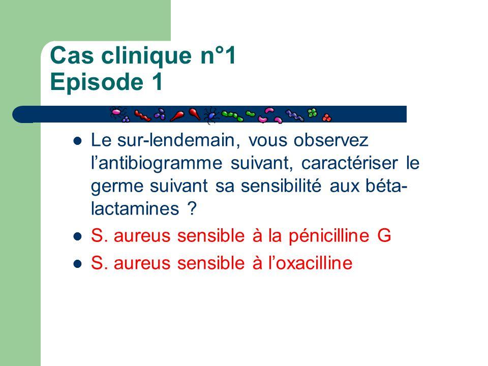 Cas clinique n°1 Episode 1 Le sur-lendemain, vous observez l'antibiogramme suivant, caractériser le germe suivant sa sensibilité aux béta- lactamines