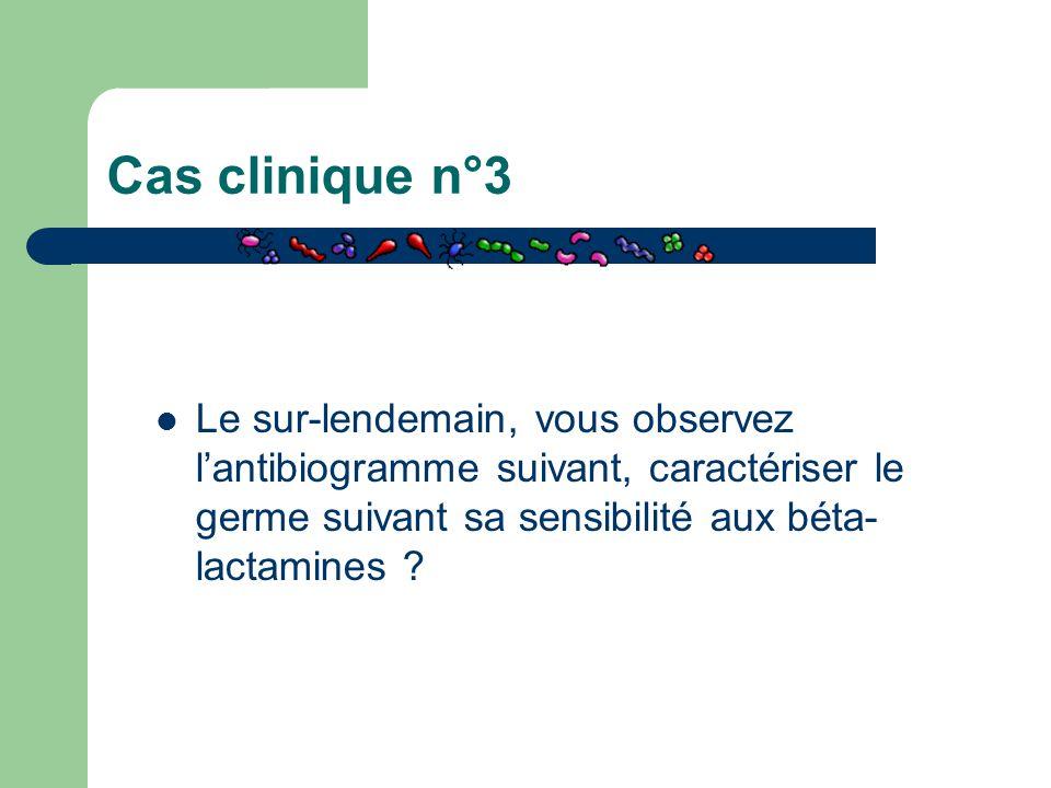 Cas clinique n°3 Le sur-lendemain, vous observez l'antibiogramme suivant, caractériser le germe suivant sa sensibilité aux béta- lactamines ?