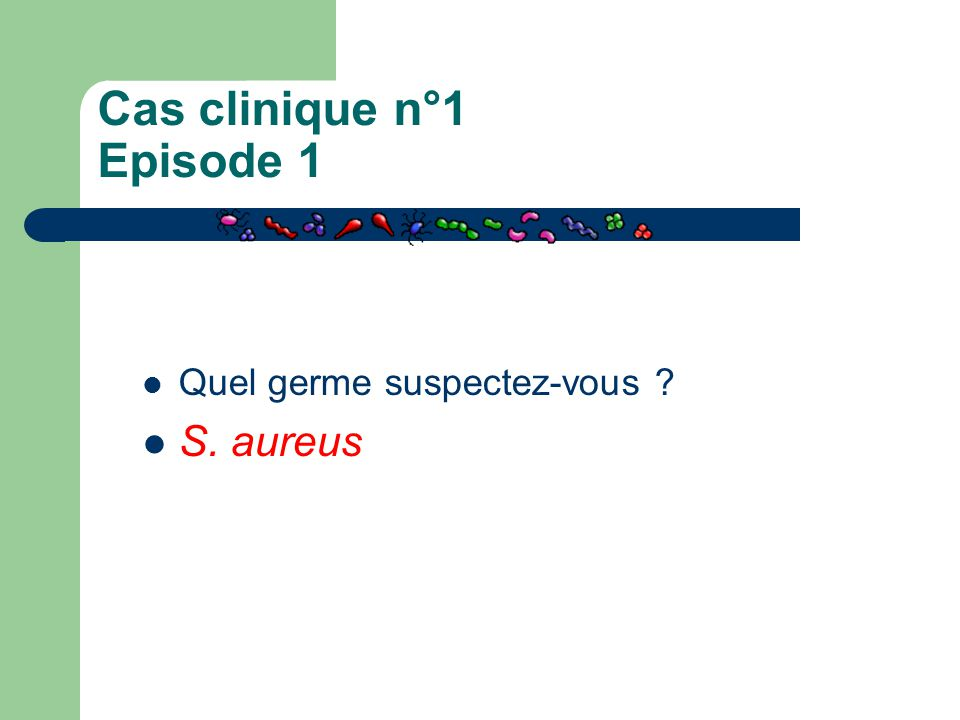 Cas clinique n°1 Episode 1 Quel germe suspectez-vous ? S. aureus