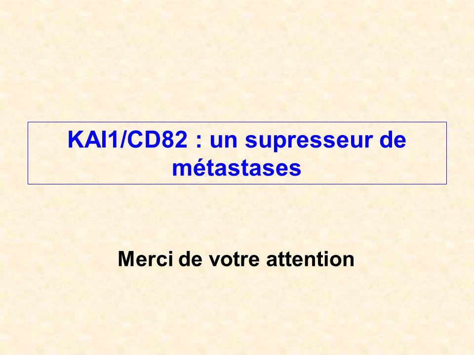 Merci de votre attention KAI1/CD82 : un supresseur de métastases