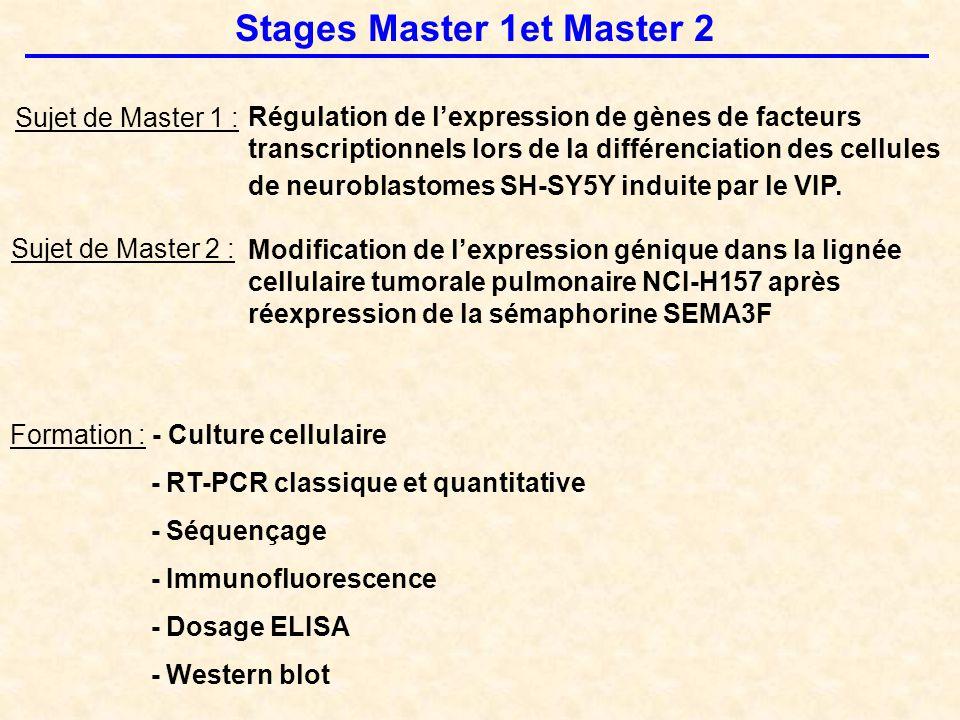 Stages Master 1et Master 2 Sujet de Master 1 : Régulation de l'expression de gènes de facteurs transcriptionnels lors de la différenciation des cellules de neuroblastomes SH-SY5Y induite par le VIP.