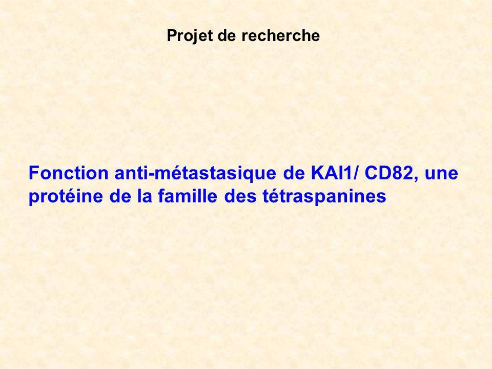 Projet de recherche Fonction anti-métastasique de KAI1/ CD82, une protéine de la famille des tétraspanines