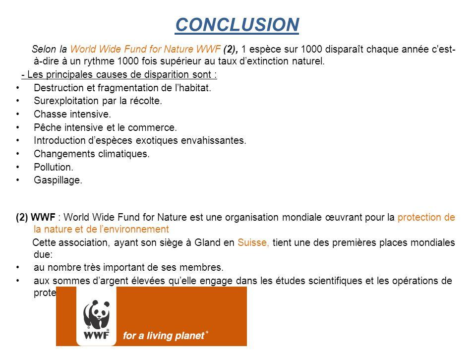 CONCLUSION Selon la World Wide Fund for Nature WWF (2), 1 espèce sur 1000 disparaît chaque année c est- à-dire à un rythme 1000 fois supérieur au taux d'extinction naturel.