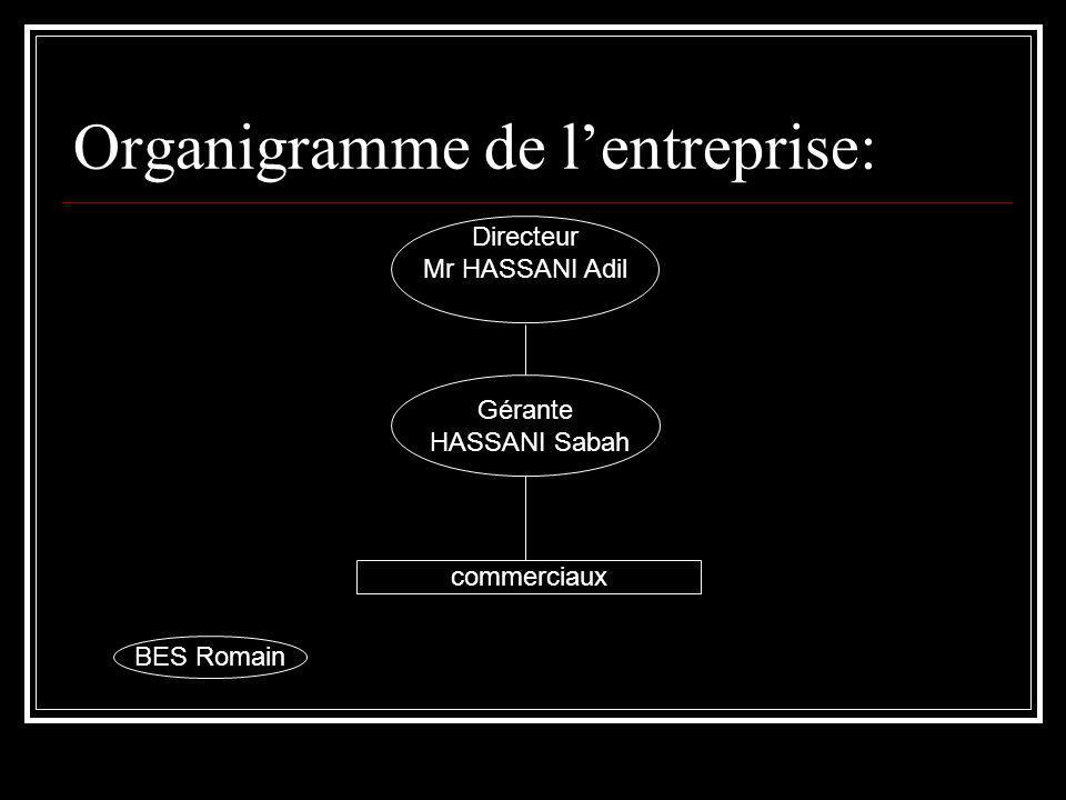 Organigramme de l'entreprise: Directeur Mr HASSANI Adil Gérante HASSANI Sabah commerciaux BES Romain