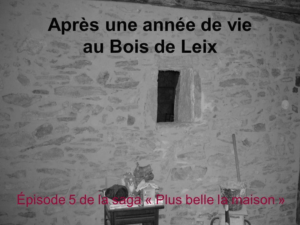 Après une année de vie au Bois de Leix Épisode 5 de la saga « Plus belle la maison »