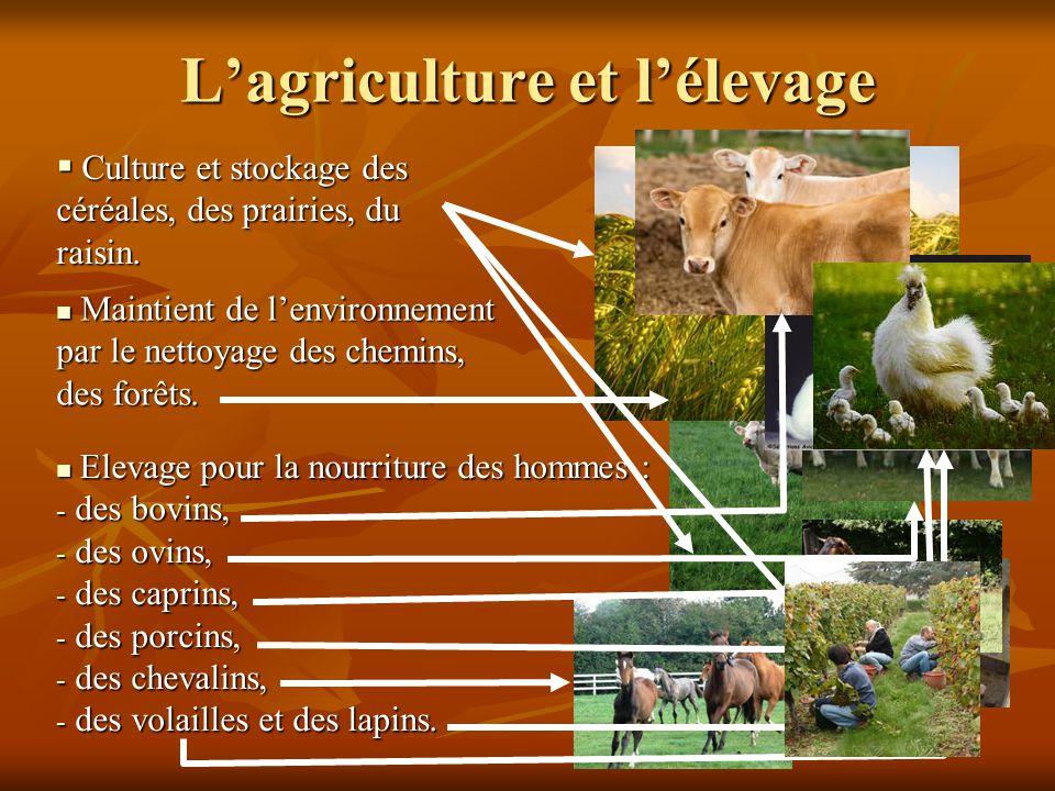 Elevage pour la nourriture des hommes : Elevage pour la nourriture des hommes : - des bovins, - des ovins, - des caprins, - des porcins, - des chevalins, - des volailles et des lapins.