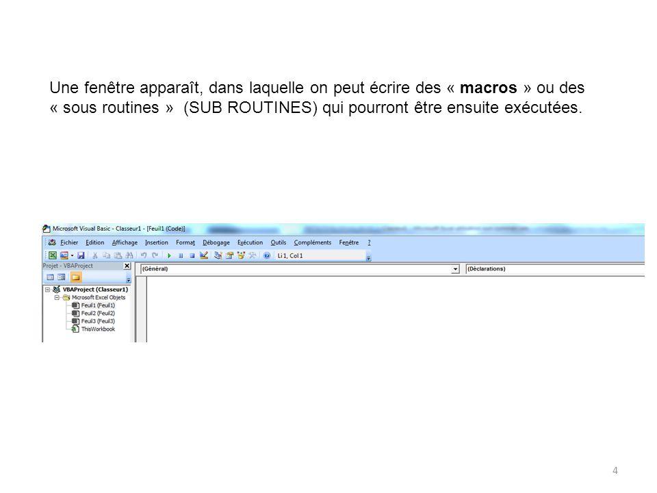4 Une fenêtre apparaît, dans laquelle on peut écrire des « macros » ou des « sous routines » (SUB ROUTINES) qui pourront être ensuite exécutées.