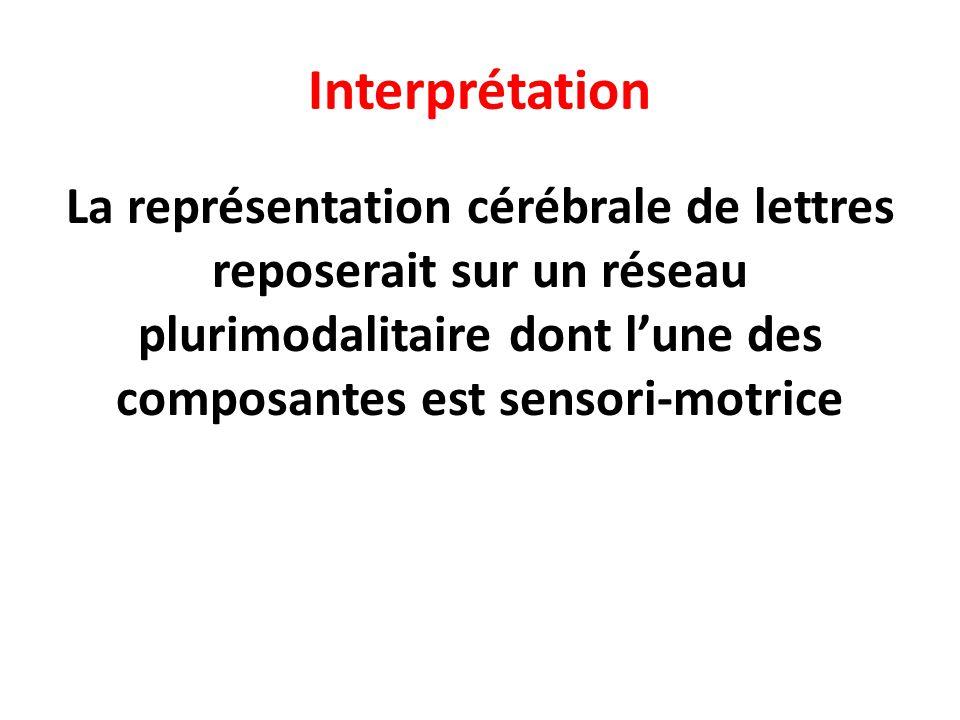 Interprétation La représentation cérébrale de lettres reposerait sur un réseau plurimodalitaire dont l'une des composantes est sensori-motrice