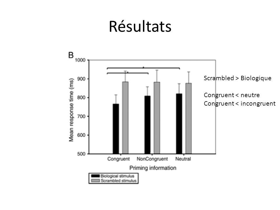 Résultats Scrambled > Biologique Congruent < neutre Congruent < incongruent