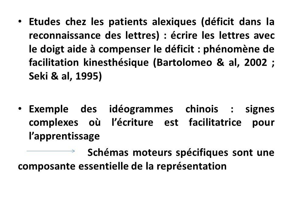 Etudes chez les patients alexiques (déficit dans la reconnaissance des lettres) : écrire les lettres avec le doigt aide à compenser le déficit : phéno