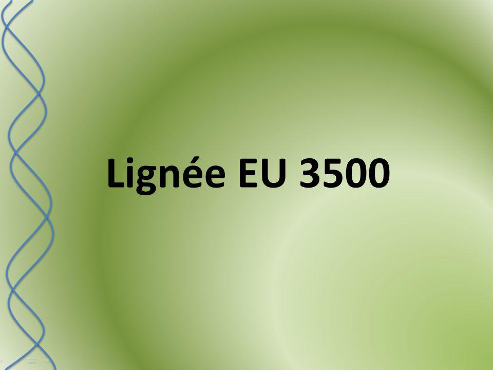 Lignée EU 3500
