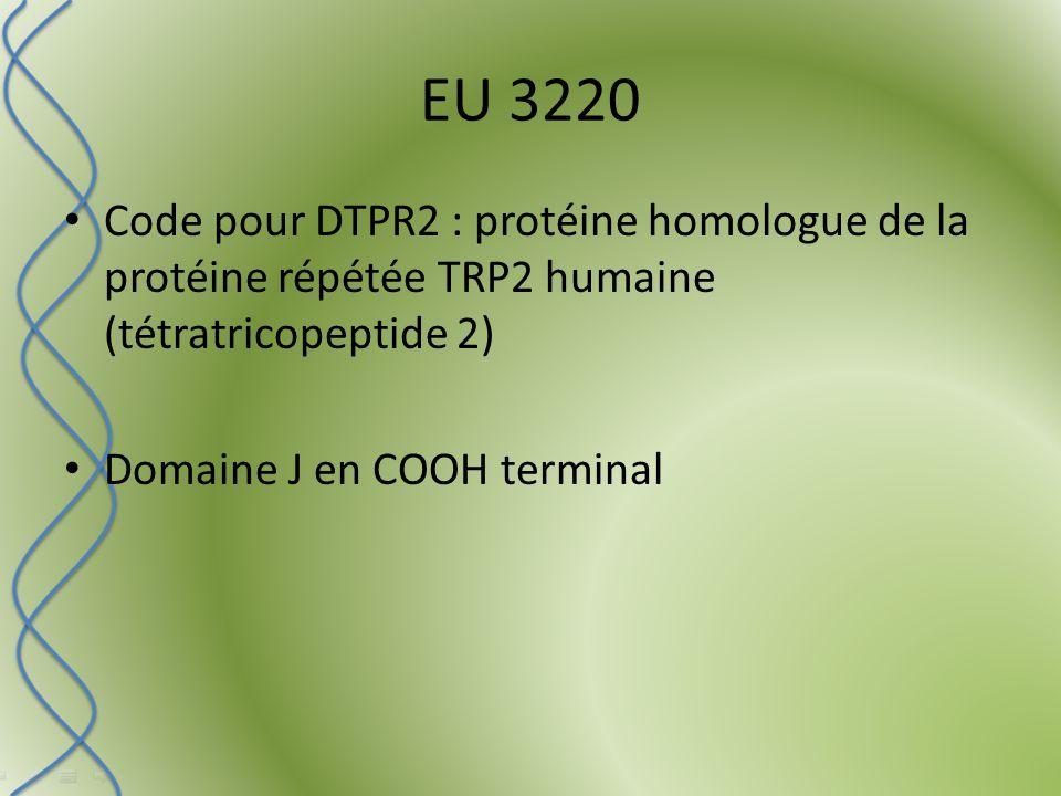 EU 3220 Code pour DTPR2 : protéine homologue de la protéine répétée TRP2 humaine (tétratricopeptide 2) Domaine J en COOH terminal