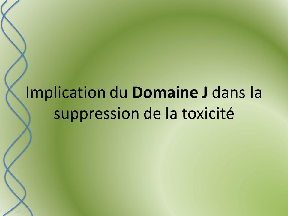 Implication du Domaine J dans la suppression de la toxicité