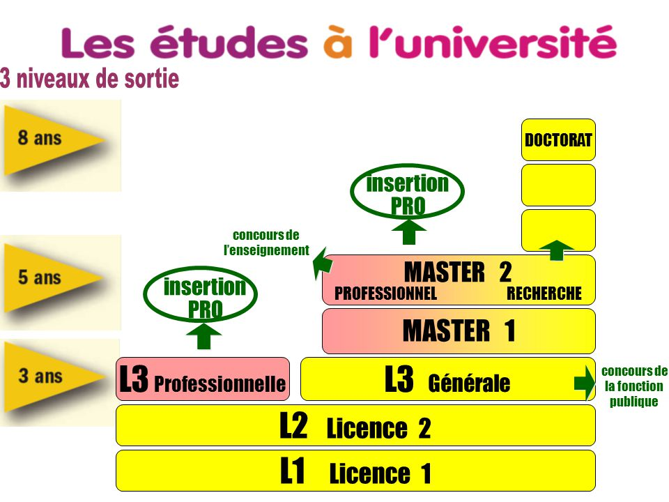 L1 Licence 1 L2 Licence 2 L3 Professionnelle L3 Générale MASTER 1 DOCTORAT insertion PRO insertion PRO MASTER 2 PROFESSIONNEL RECHERCHE concours de l'