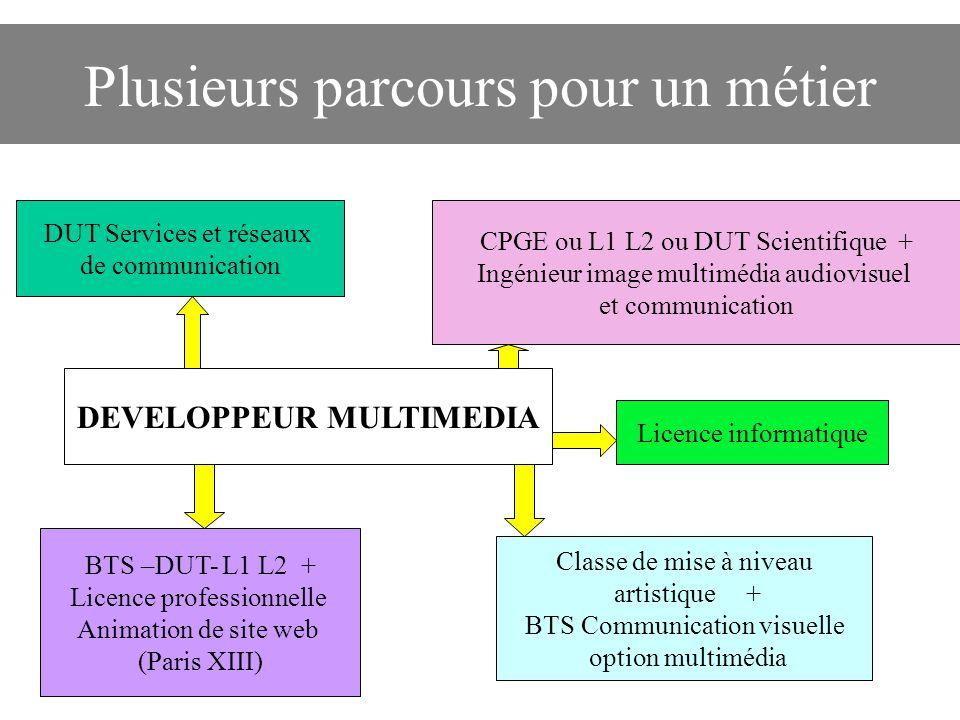 Plusieurs parcours pour un métier DUT Services et réseaux de communication CPGE ou L1 L2 ou DUT Scientifique + Ingénieur image multimédia audiovisuel