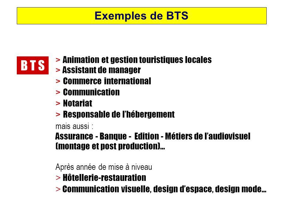 B T S > Animation et gestion touristiques locales > Assistant de manager > Commerce international > Communication > Notariat > Responsable de l'héberg