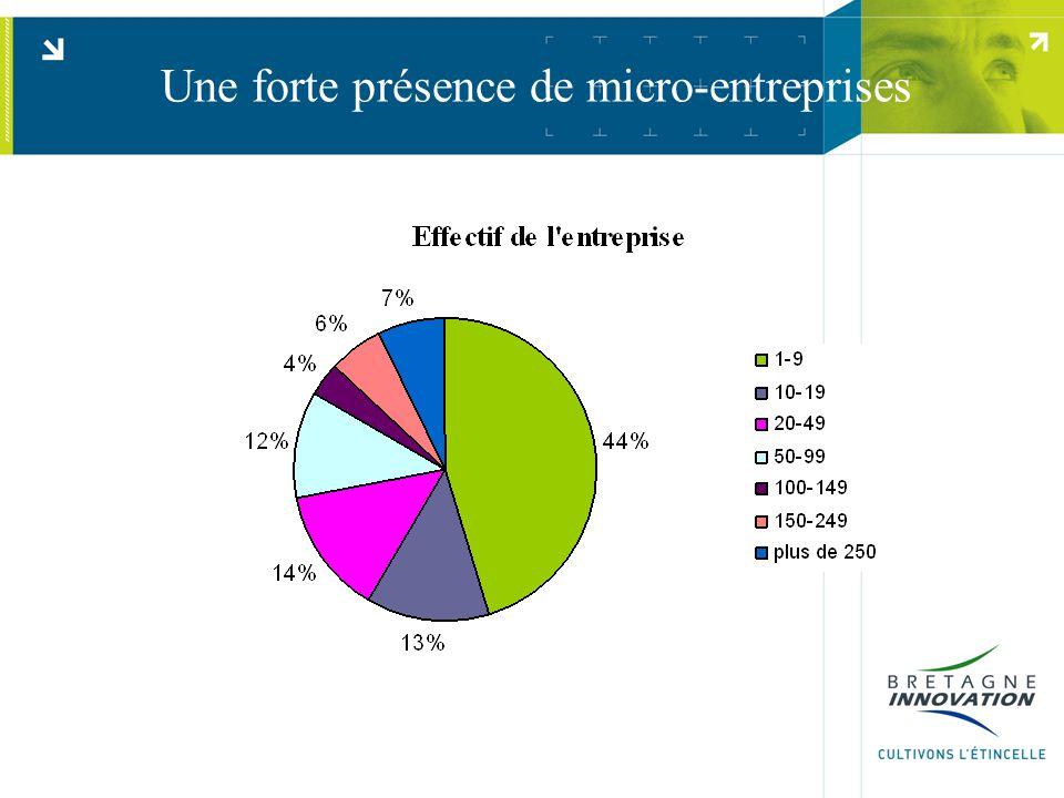 Une forte présence de micro-entreprises