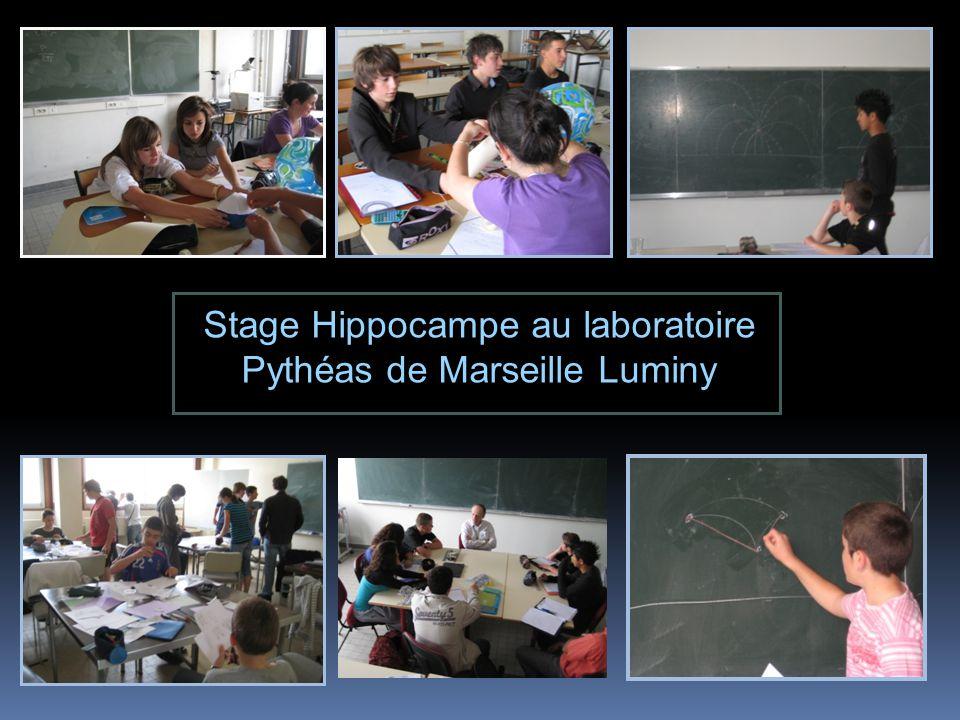 Stage Hippocampe au laboratoire Pythéas de Marseille Luminy