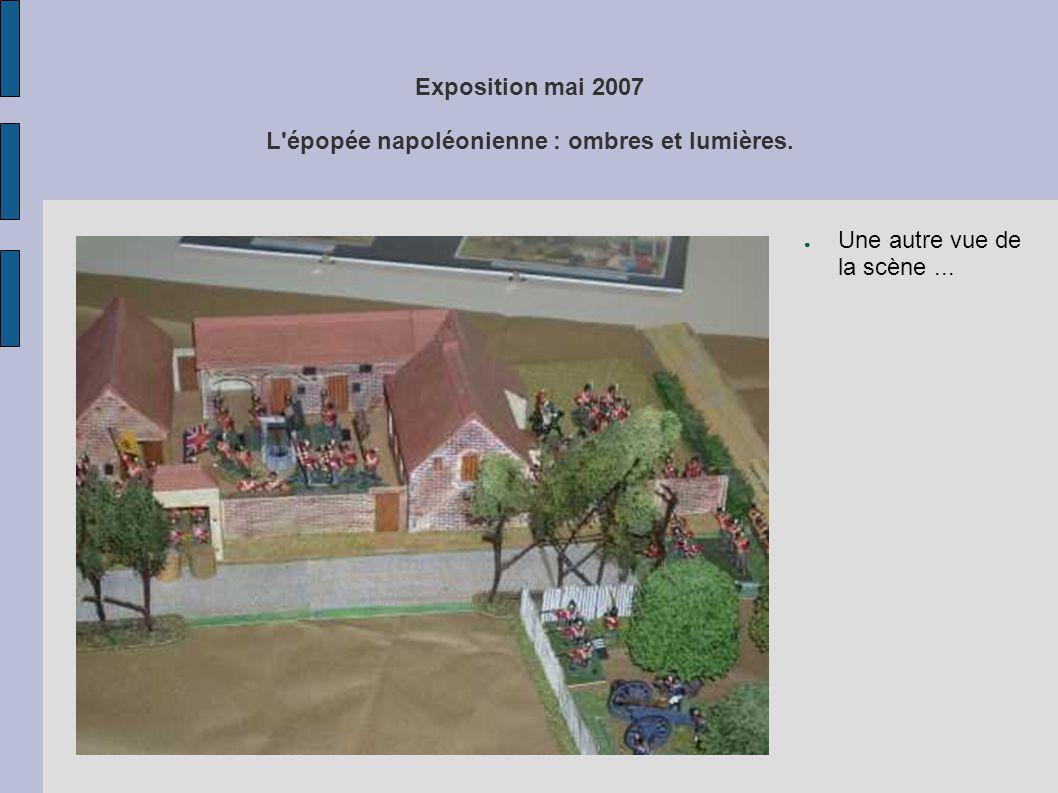 Exposition mai 2007 L'épopée napoléonienne : ombres et lumières. ● Une autre vue de la scène...