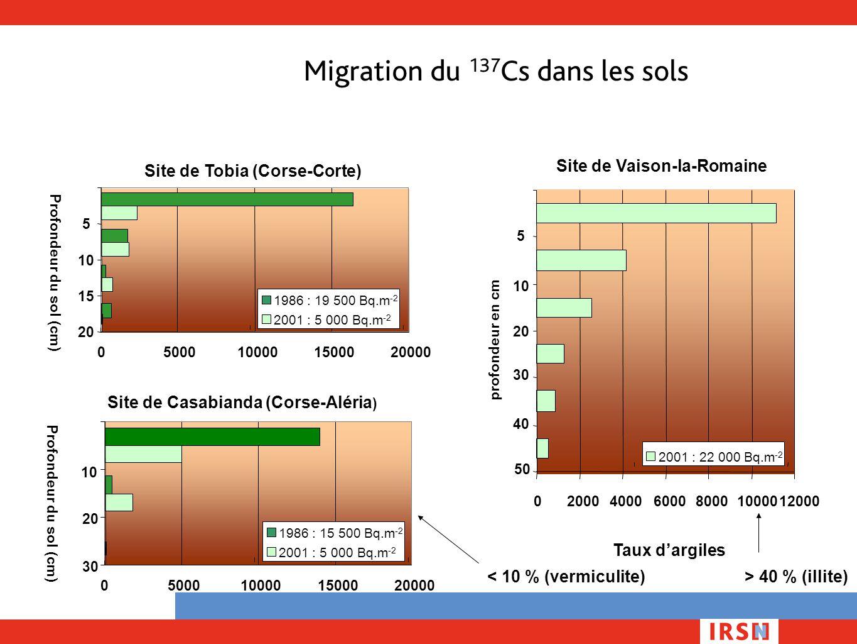Migration du 137 Cs dans les sols