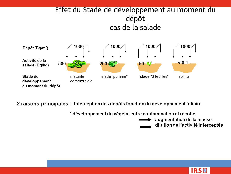 Effet du Stade de développement au moment du dépôt cas de la salade 2 raisons principales : Interception des dépôts fonction du développement foliaire