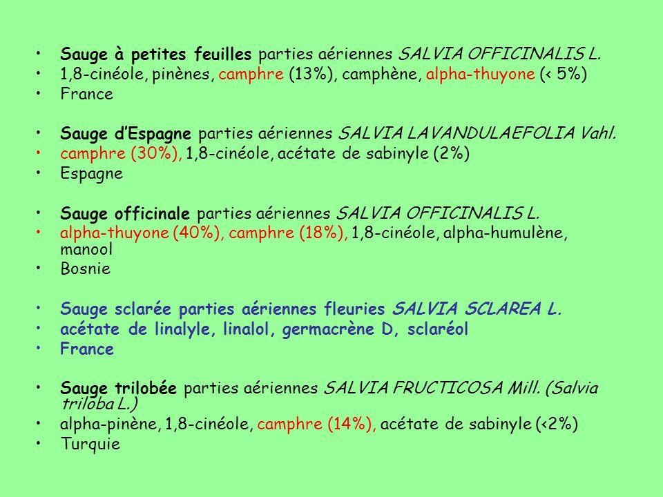 Sauge à petites feuilles parties aériennes SALVIA OFFICINALIS L. 1,8-cinéole, pinènes, camphre (13%), camphène, alpha-thuyone (< 5%) France Sauge d'Es