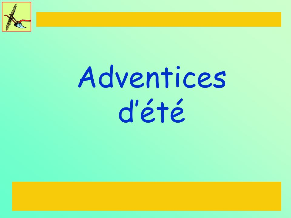 Adventices d'été