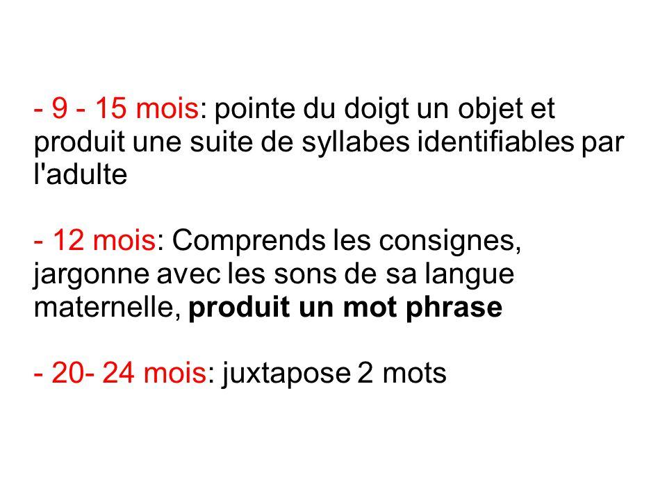 - 9 - 15 mois: pointe du doigt un objet et produit une suite de syllabes identifiables par l'adulte - 12 mois: Comprends les consignes, jargonne avec