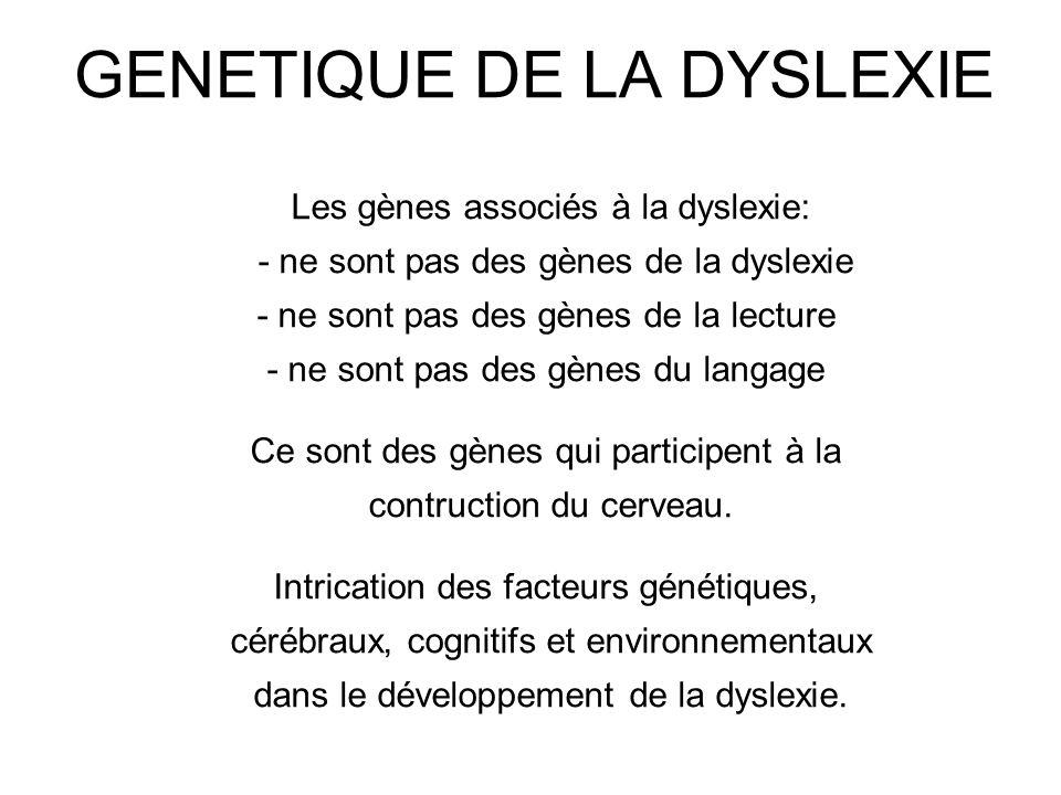 GENETIQUE DE LA DYSLEXIE Les gènes associés à la dyslexie: - ne sont pas des gènes de la dyslexie - ne sont pas des gènes de la lecture - ne sont pas
