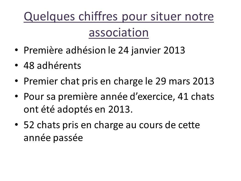 Quelques chiffres pour situer notre association Première adhésion le 24 janvier 2013 48 adhérents Premier chat pris en charge le 29 mars 2013 Pour sa première année d'exercice, 41 chats ont été adoptés en 2013.