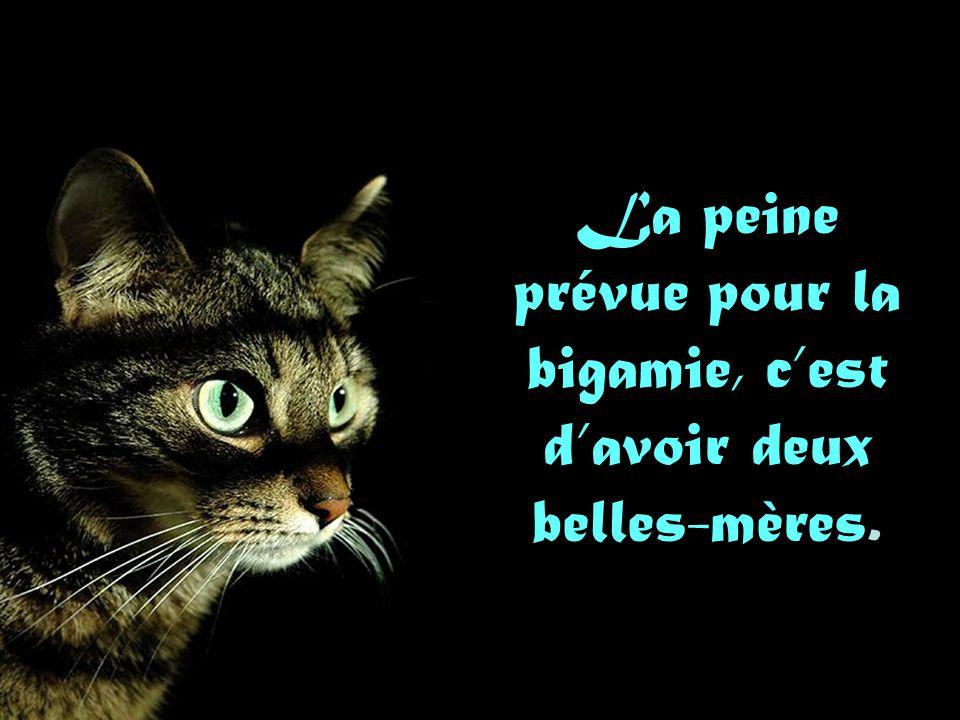 La femme coquette est l'agrément des autres et le mal de qui la possède. Voltaire