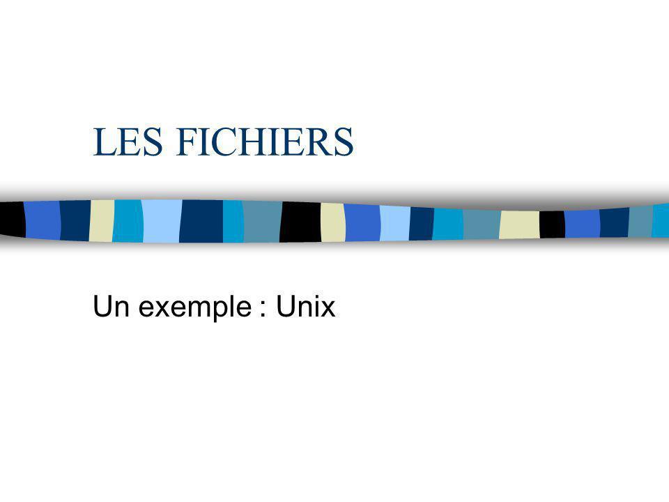 LES FICHIERS Un exemple : Unix