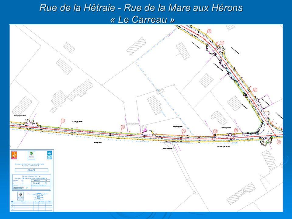 Rue de la Hêtraie - Rue de la Mare aux Hérons « Le Carreau »