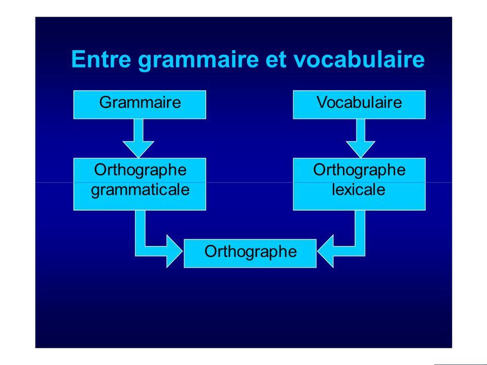 Entre grammaire et vocabulaire Grammaire Orthographe grammaticale Orthographe Vocabulaire Orthographe lexicale