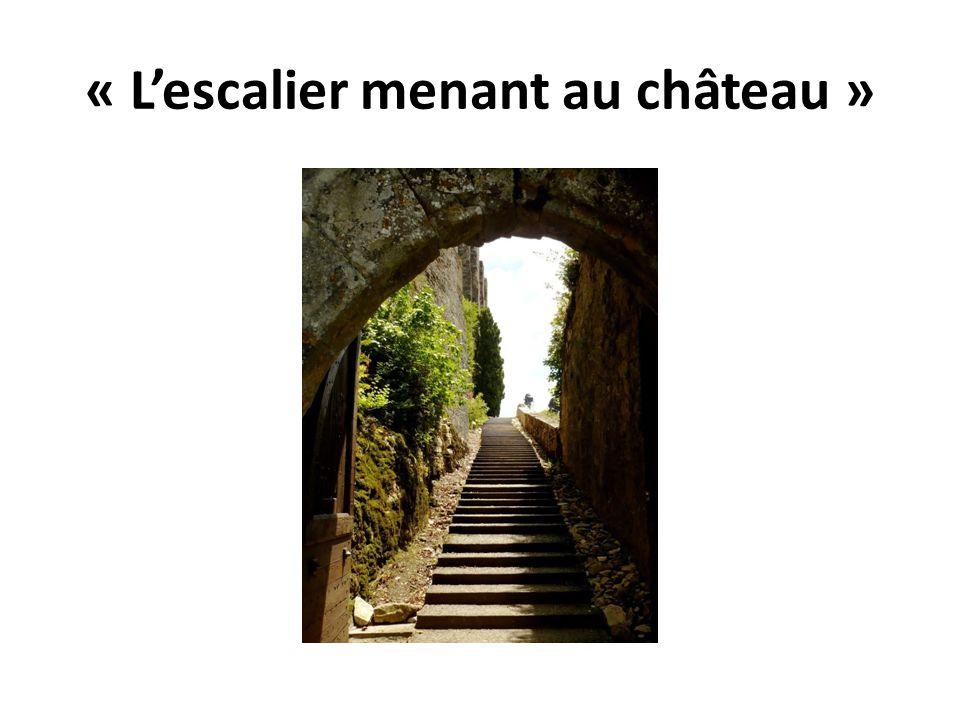 « L'escalier menant au château »